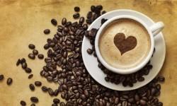 Nervkittlande fakta om kaffe