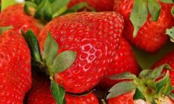 Så nyttiga är jordgubbar