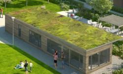 Riksbyggen får uppdrag att sköta gröna tak i Göteborg