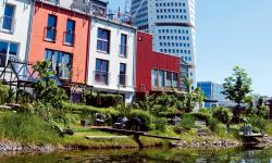 Ny miljödirektör i Malmö - landets grönaste stad